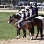 Bellingen Pony Club