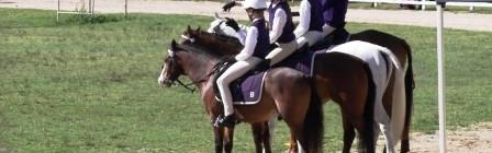Bellingen Pony Club