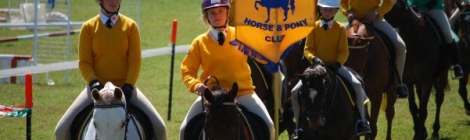 North Dorrigo Pony Club