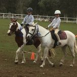 Glenreagh Pony Club