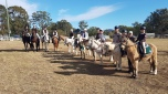 Wallamba River & District Pony Club